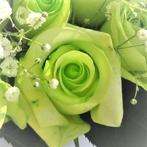 バラグリーン