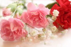 母の日アレンジ赤ピンク
