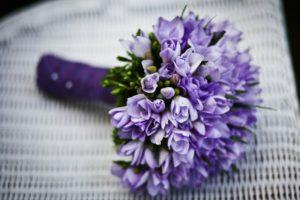 紫アイキャッチ